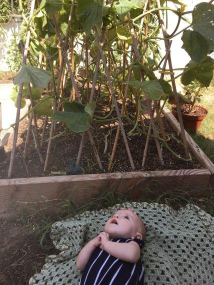 babygarden